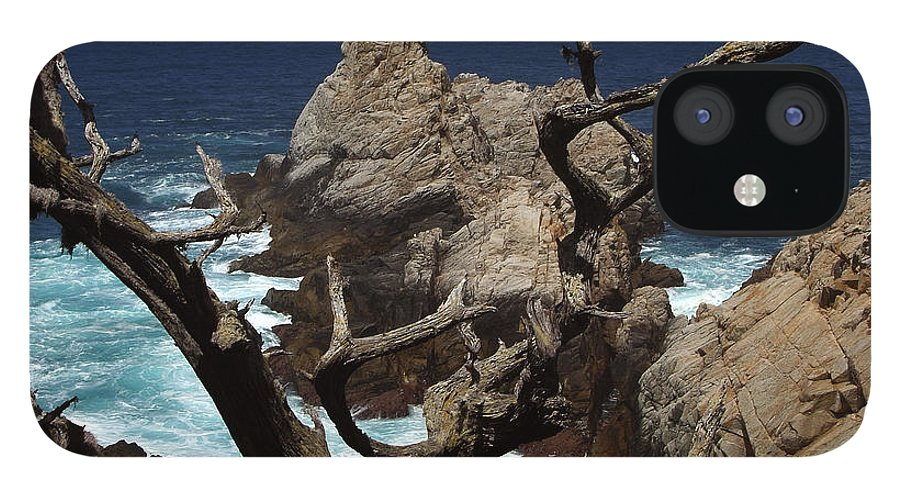 Carmel IPhone 12 Case featuring the photograph Point Lobos Rocks and Branches by Charlene Mitchell