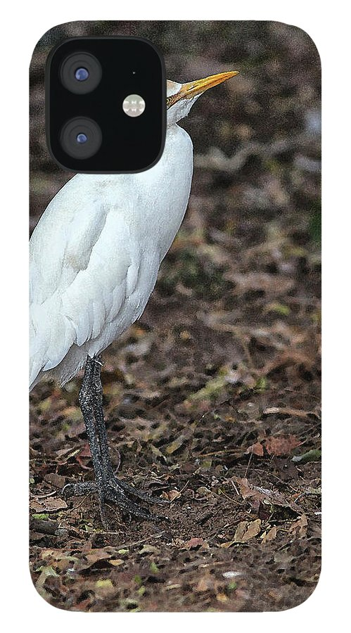 Egret iPhone 12 Case featuring the digital art Profile of an Egret by Sandeep Gangadharan