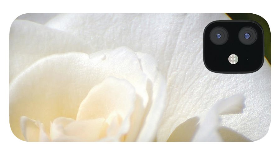 Flower IPhone 12 Case featuring the photograph Pure by Larry Keahey