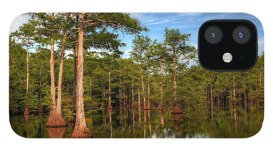 Quiet IPhone 12 Case featuring the photograph Quiet Afternoon At The Bayou by Ester McGuire