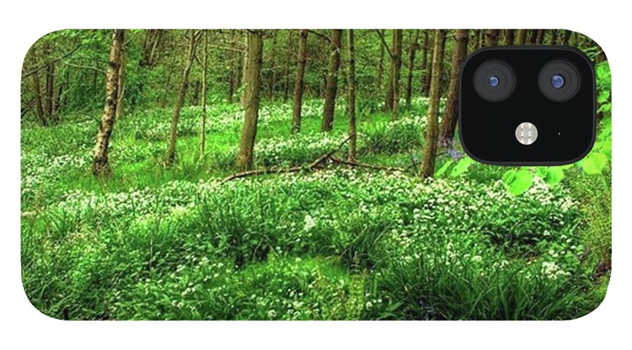 Nature IPhone 12 Case featuring the photograph Ramsons And Bluebells, Bentley Woods by John Edwards