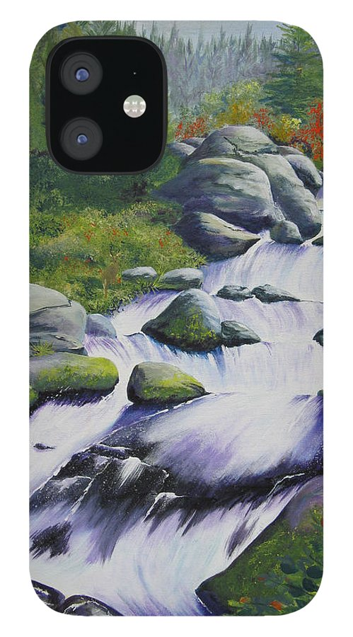 Waterfall IPhone 12 Case featuring the painting Rocky Creek by Karen Stark