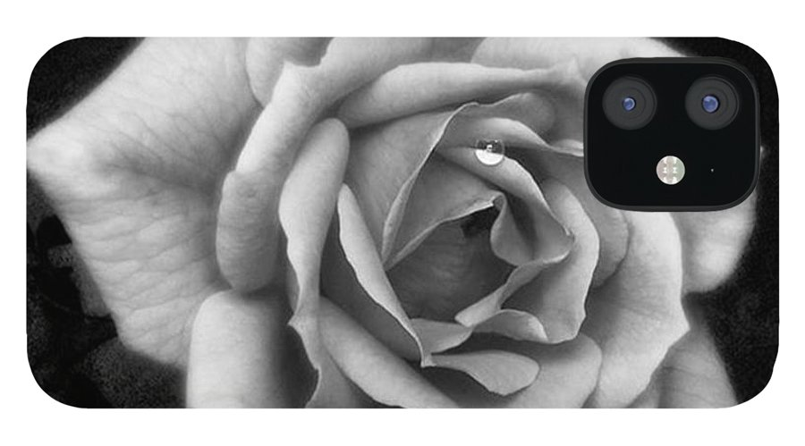 Beautiful IPhone 12 Case featuring the photograph Rose In Mono. #flower #flowers by John Edwards