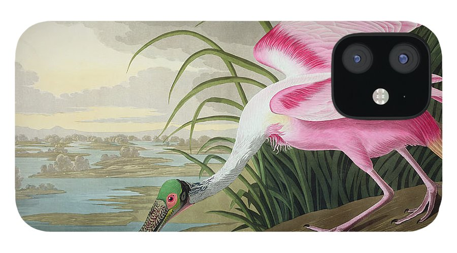 Audubon IPhone 12 Case featuring the painting Roseate Spoonbill by John James Audubon