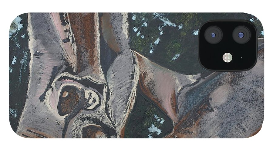Contemporary Tree IPhone 12 Case featuring the drawing San Diego Zoo by Leah Tomaino
