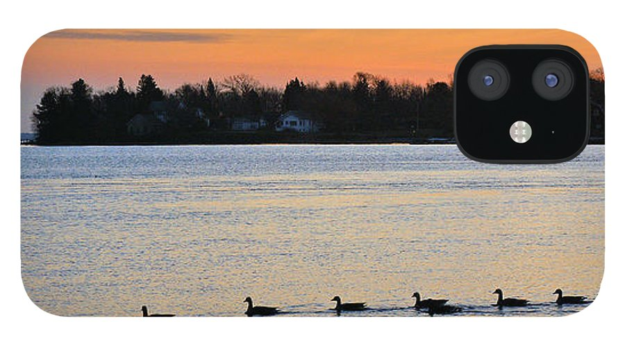 Sunrise iPhone 12 Case featuring the photograph Sand Bay Geese by Bill Morgenstern
