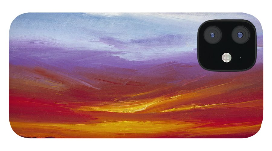 Skyscape IPhone 12 Case featuring the painting Sarasota Bay I by James Christopher Hill