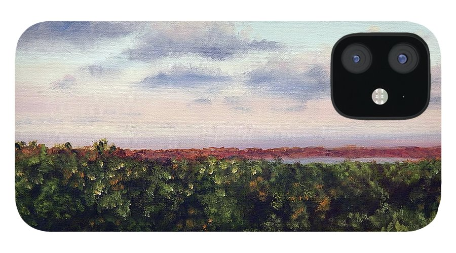 Vineyards IPhone 12 Case featuring the painting Saude Creek Sunset II by Anne Kushnick