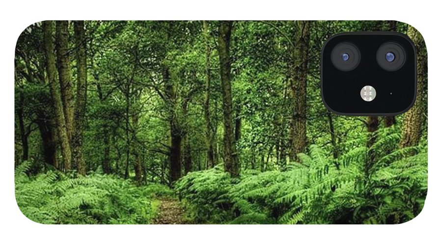 Nature IPhone 12 Case featuring the photograph Seeswood, Nuneaton by John Edwards