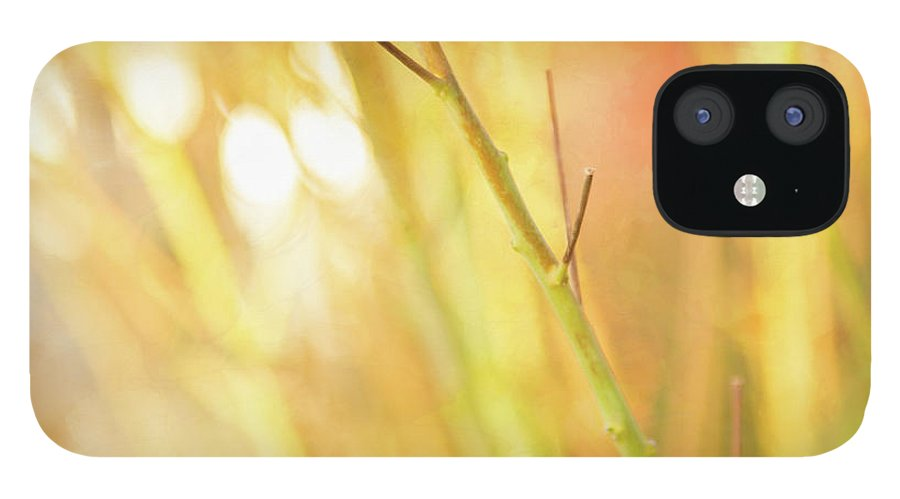Gardens iPhone 12 Case featuring the photograph Setting Season by Marilyn Cornwell