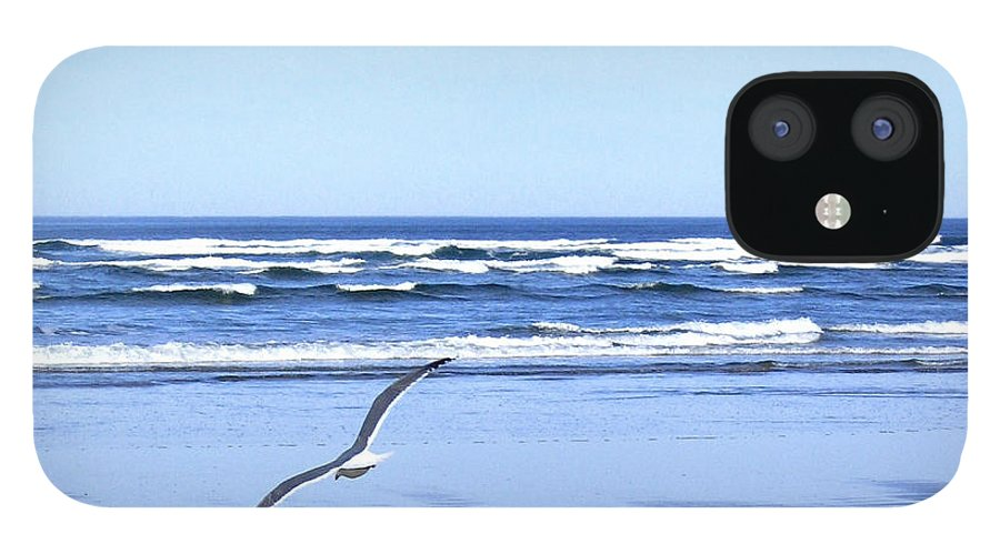 Seagull IPhone 12 Case featuring the photograph Shadow On The Sand by Will Borden
