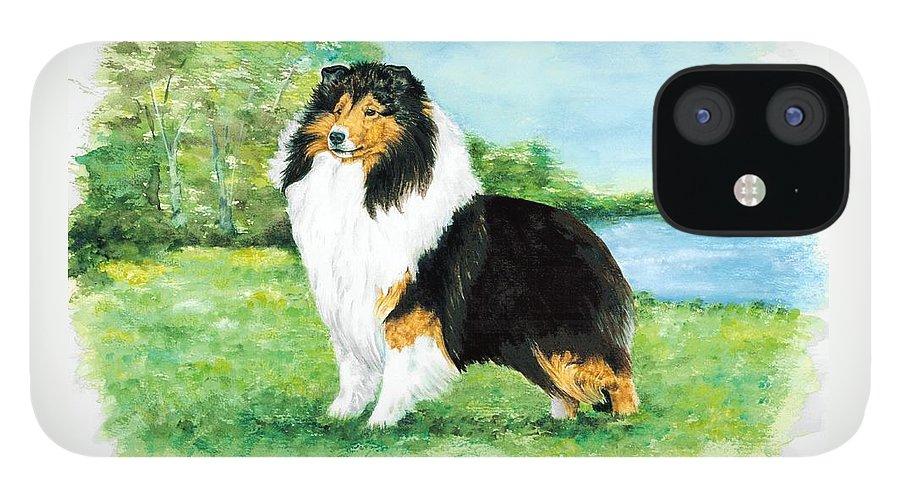 Shetland Sheepdog IPhone 12 Case featuring the painting Sheltie Wait by Kathleen Sepulveda
