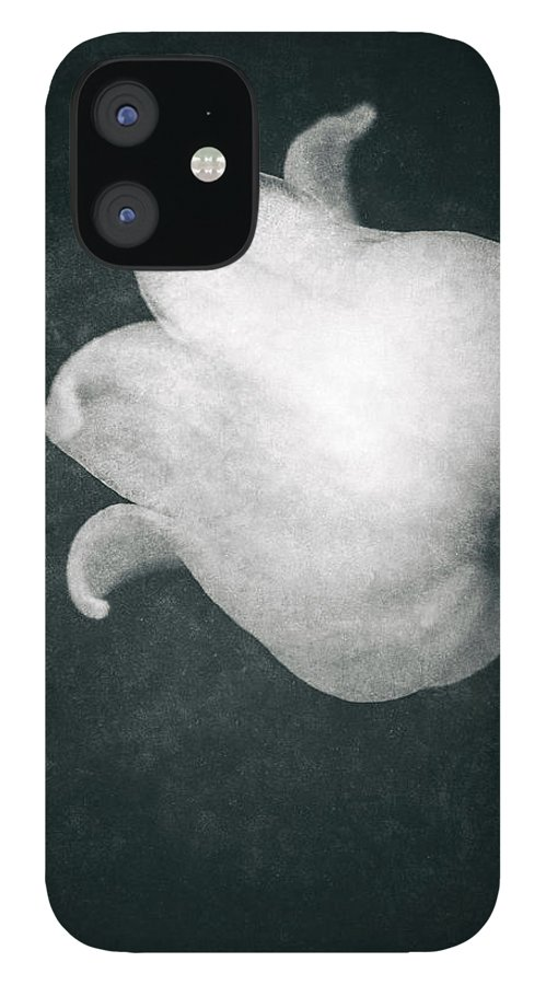 Lily Of The Valley IPhone 12 Case featuring the photograph Shy by Wim Lanclus