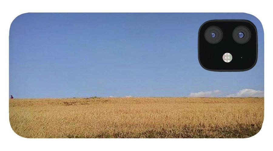 Sunnyday IPhone 12 Case featuring the photograph Sunnyday by Kumiko Izumi