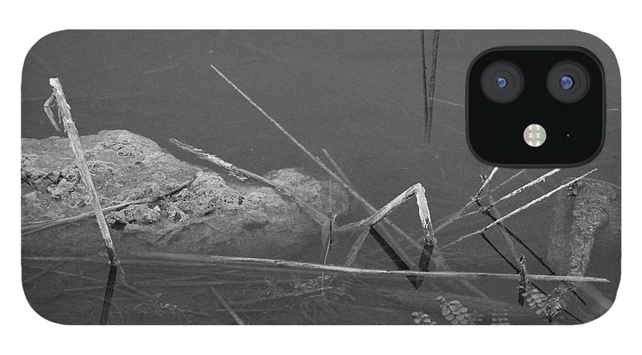 Black And White IPhone 12 Case featuring the photograph Spider In Water by Rob Hans