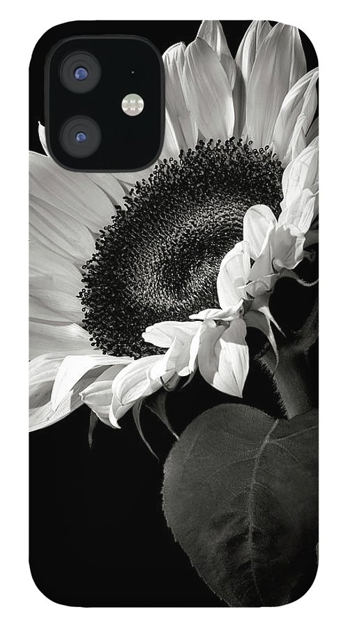 Flower IPhone 12 Case featuring the photograph Sunflower in Black and White by Endre Balogh