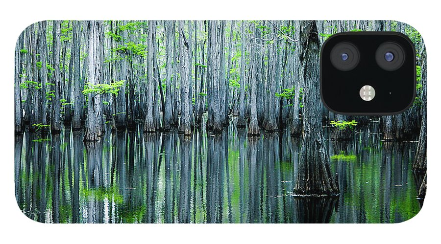 Algae IPhone 12 Case featuring the photograph Swamp in Louisiana by Ester McGuire