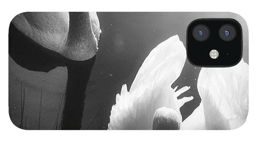 Swan IPhone 12 Case featuring the photograph Swan Lake In Winter - Kingsbury Nature by John Edwards