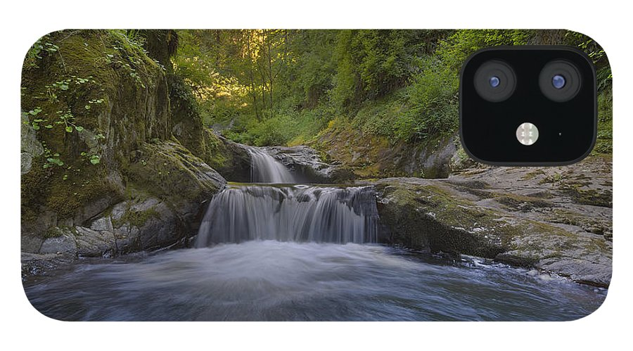 Sweet Creek Falls Trail Complex IPhone 12 Case featuring the photograph Sweet Little Waterfall by David Gn