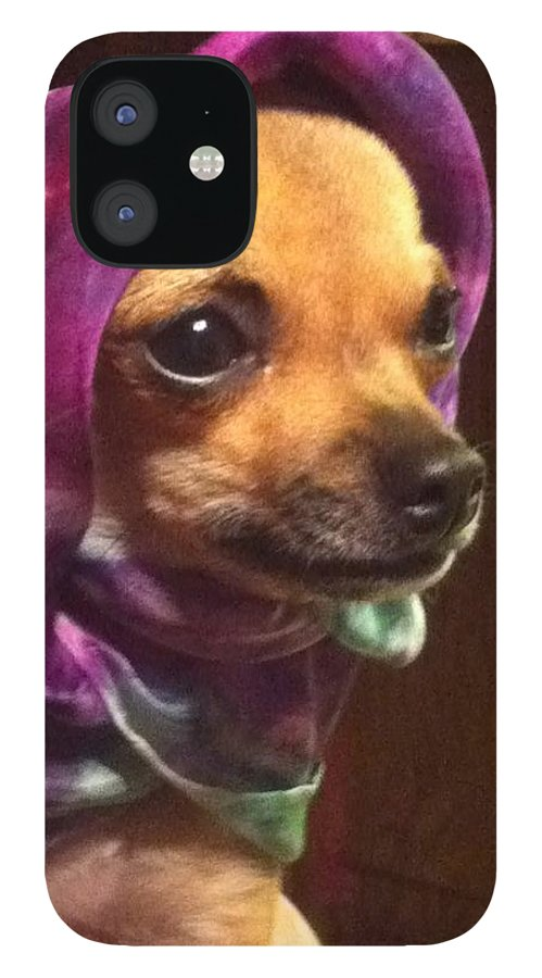 Puppy IPhone 12 Case featuring the photograph Tea Cup Wearing Silk by Beverly Johnson