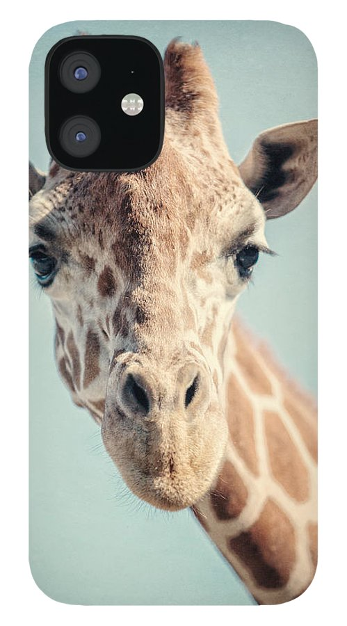 Giraffe IPhone 12 Case featuring the photograph The Baby Giraffe by Lisa R