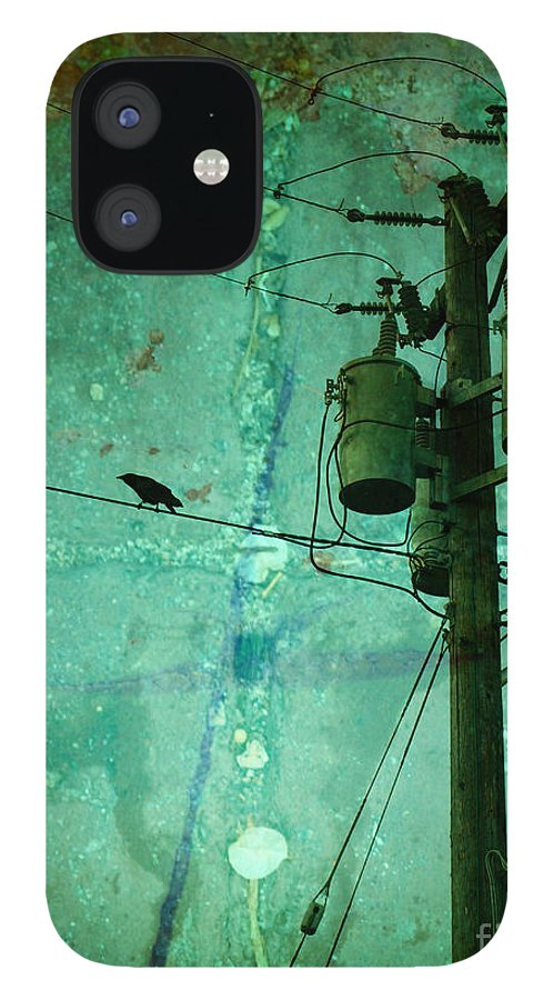 Urban IPhone 12 Case featuring the photograph The Urban Crow by Tara Turner