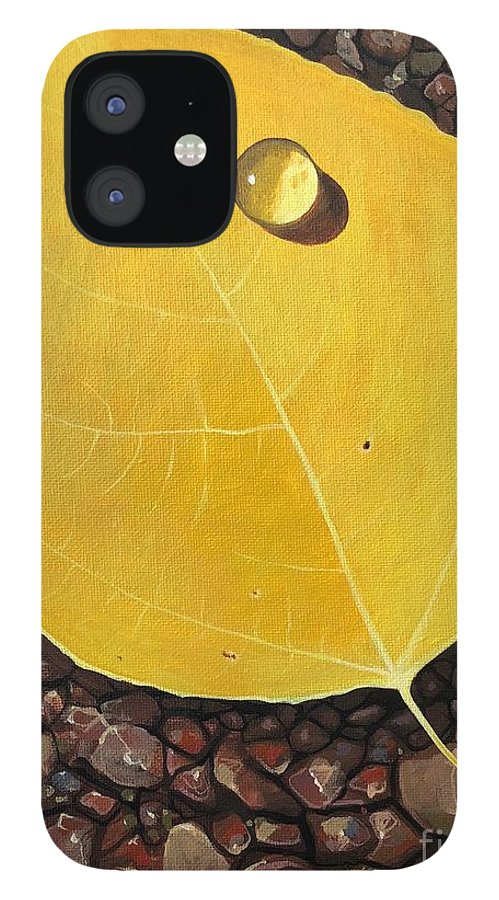 Aspen iPhone 12 Case featuring the painting There's Never a Forever Thing by Hunter Jay