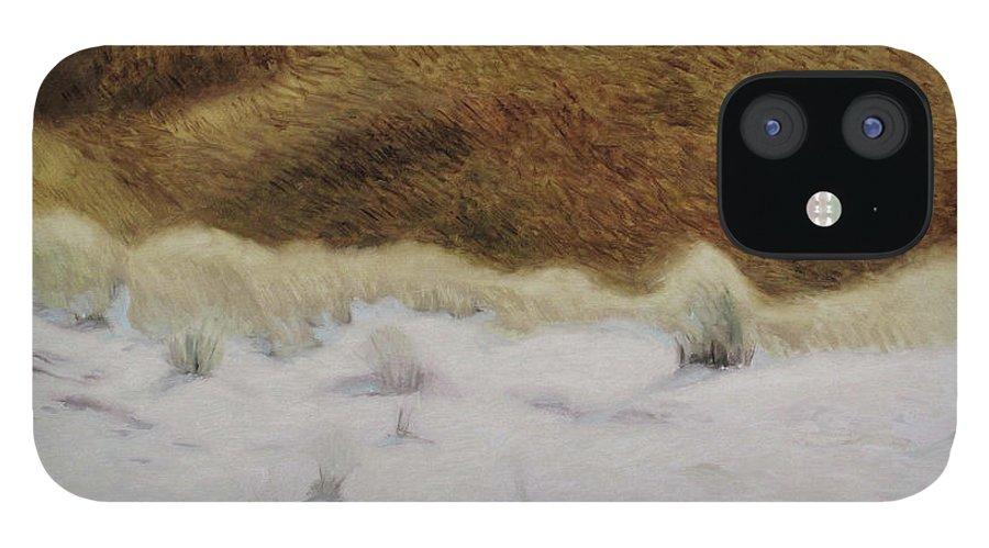 Nida iPhone 12 Case featuring the painting Tiger Dune by Raimonda Jatkeviciute-Kasparaviciene