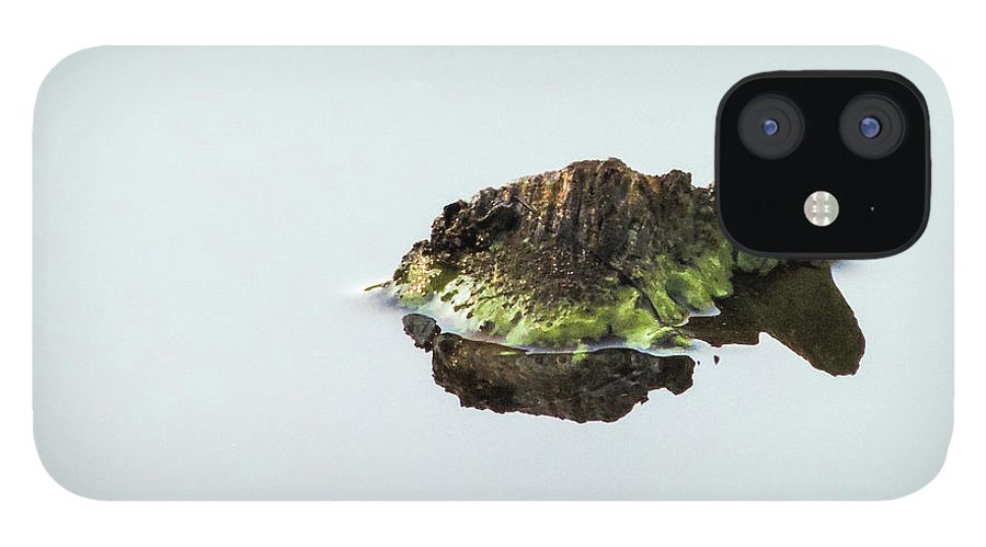 Turtle IPhone 12 Case featuring the photograph Turtle or Mountain by Randy J Heath