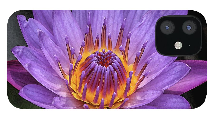 Water Lily iPhone 12 Case featuring the digital art Water Lily by Sandeep Gangadharan