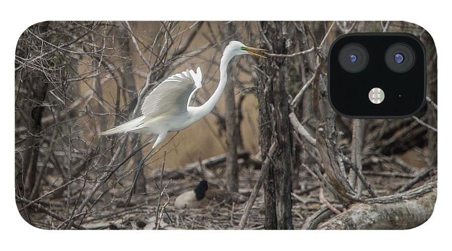 White IPhone 12 Case featuring the photograph White Egret by David Bearden