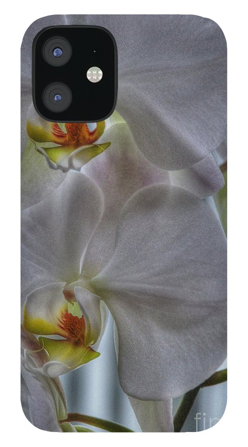 National Orchid Day IPhone 12 Case featuring the photograph White Orchids by David Bearden