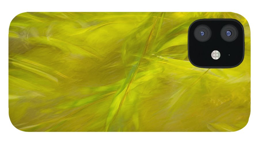 Charles Daley Park iPhone 12 Case featuring the photograph Willow Dreaming by Marilyn Cornwell