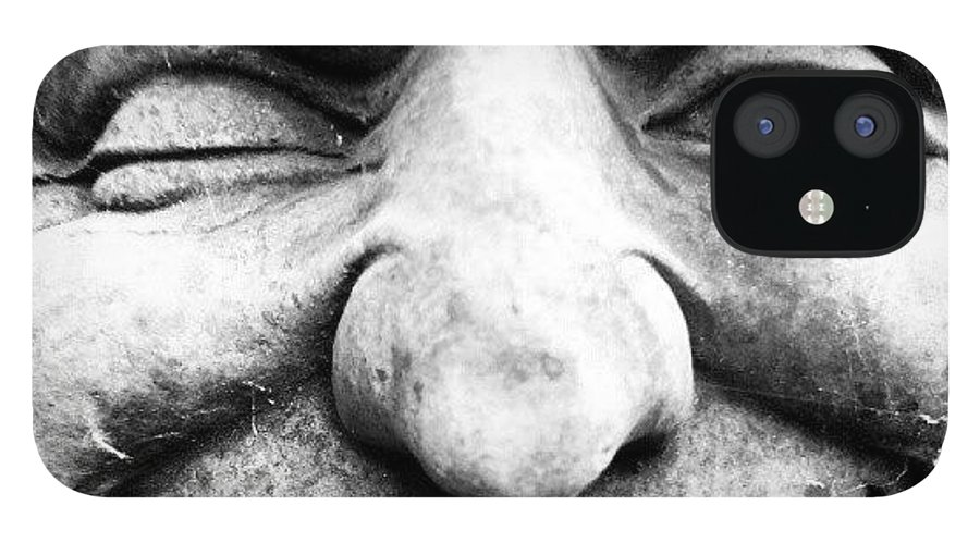 Black And White IPhone Case featuring the photograph Wink by Gary Stringer