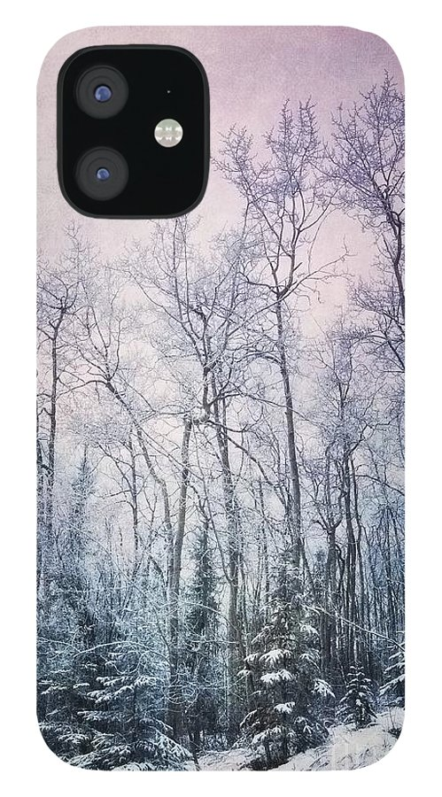Forest IPhone 12 Case featuring the photograph Winter Forest by Priska Wettstein