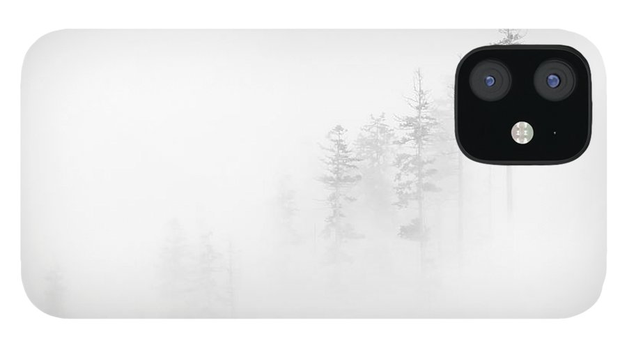 Winter IPhone 12 Case featuring the photograph Winter Veil by Mike Dawson