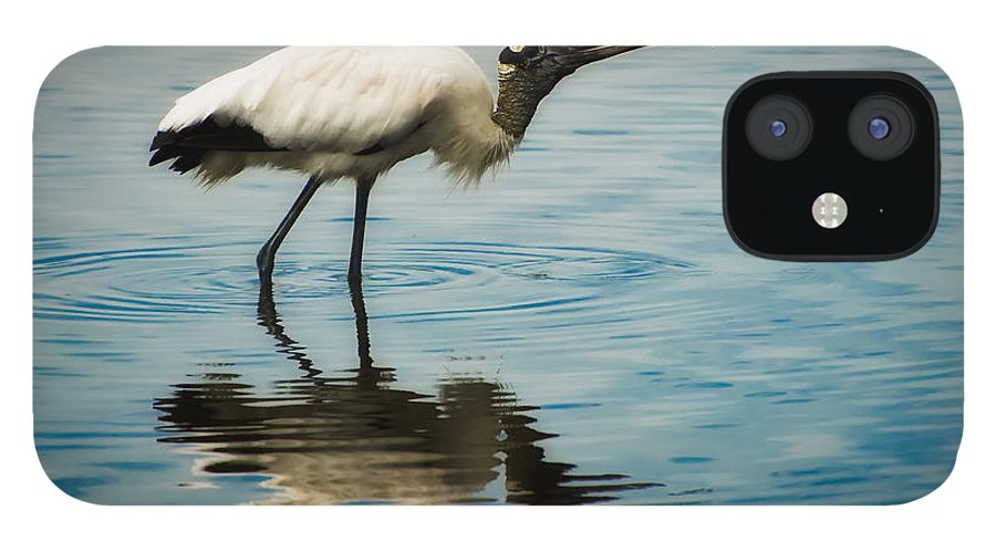 Stork IPhone 12 Case featuring the photograph Wood Stork by Rich Leighton