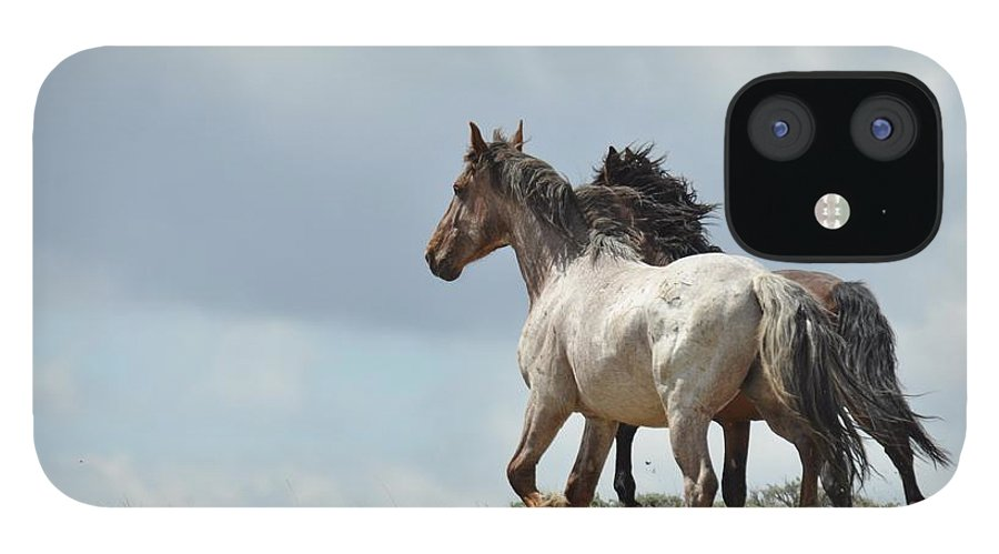 Wild Horses IPhone 12 Case featuring the photograph You Will Never Catch Us by Frank Madia