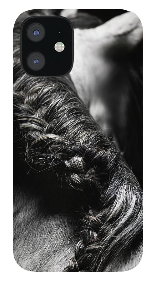 Horse IPhone 12 Case featuring the photograph Braided Mane Of Grey Horse by Henrik Sorensen