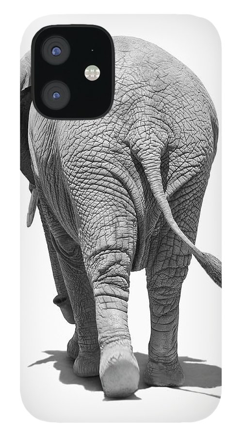 Shadow IPhone 12 Case featuring the photograph Elephants Behind by Burazin