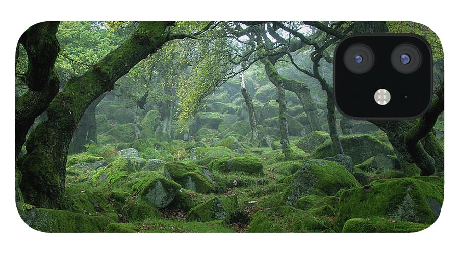 Tranquility IPhone 12 Case featuring the photograph Padley Gorge by Duncan Fawkes