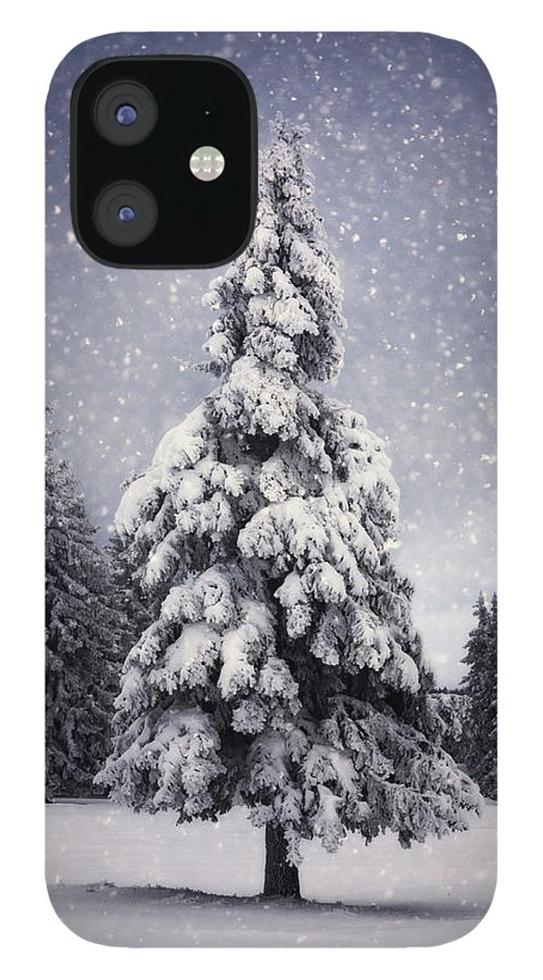 Scenics IPhone 12 Case featuring the photograph Winter Tree by Borchee