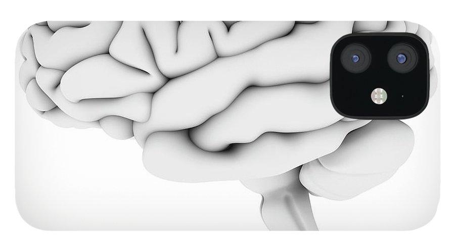 White Background IPhone 12 Case featuring the digital art Brain, Artwork by Pasieka