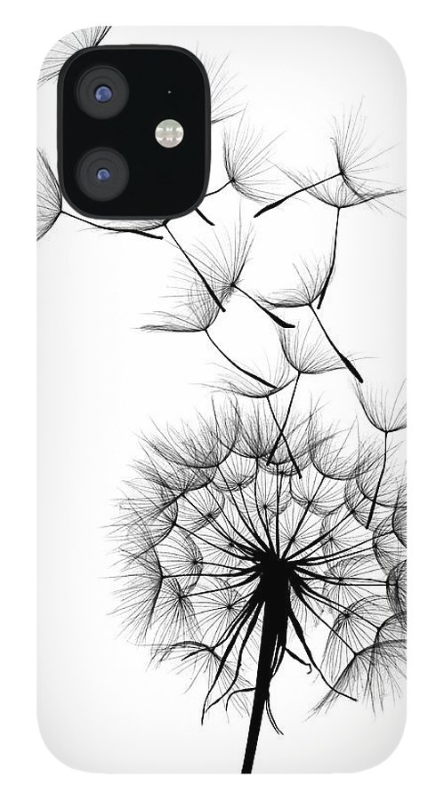 Wind IPhone 12 Case featuring the photograph Dandelion by Sunnybeach