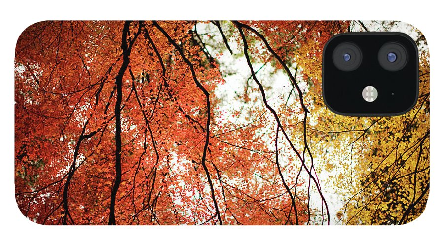 Tranquility IPhone 12 Case featuring the photograph Fall Colors In Japan by Jdphotography