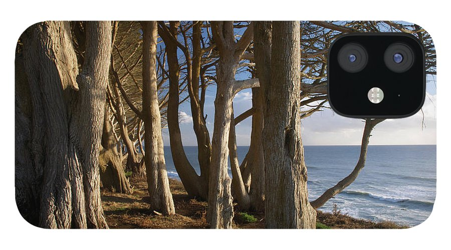 Tranquility IPhone 12 Case featuring the photograph Rustic Davenport Coast by Mitch Diamond