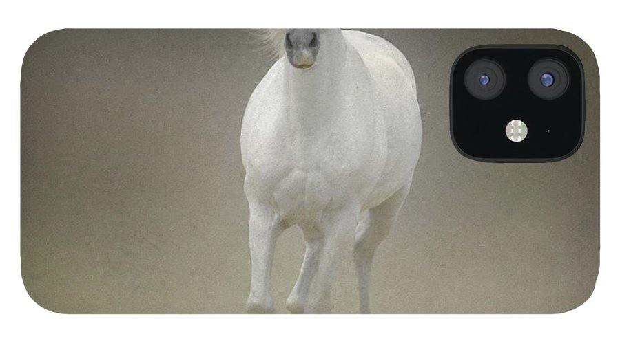 Horse iPhone 12 Case featuring the photograph White Horse Galloping by Christiana Stawski