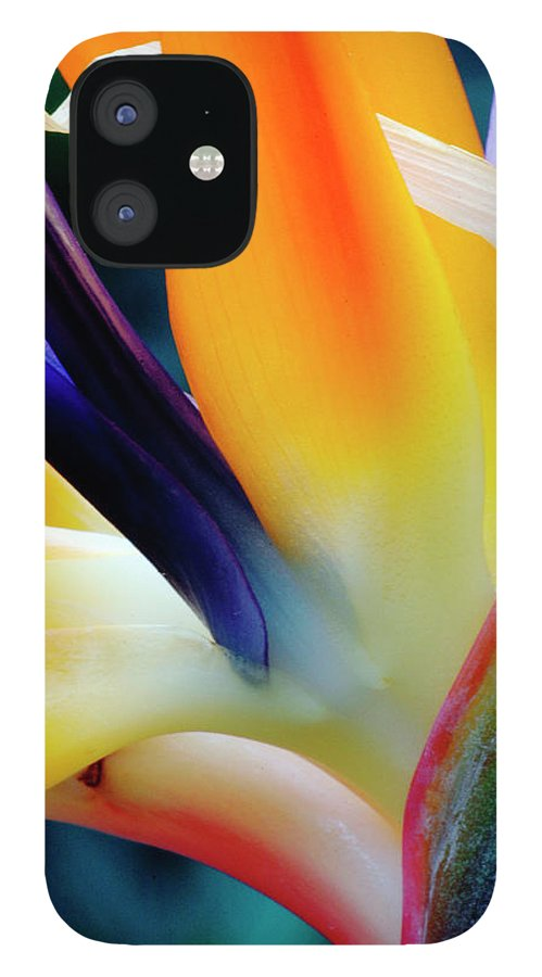 Banana Tree IPhone 12 Case featuring the photograph A Close-up Of A Flower Of A Bird Of by Eromaze