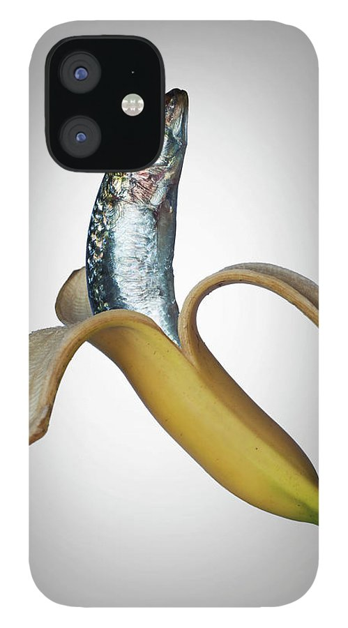 Confusion IPhone 12 Case featuring the photograph A Fish In A Banana by Buena Vista Images