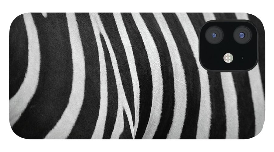 Animal Themes iPhone 12 Case featuring the photograph Abstraction Zebra by Rashed Alsikhan